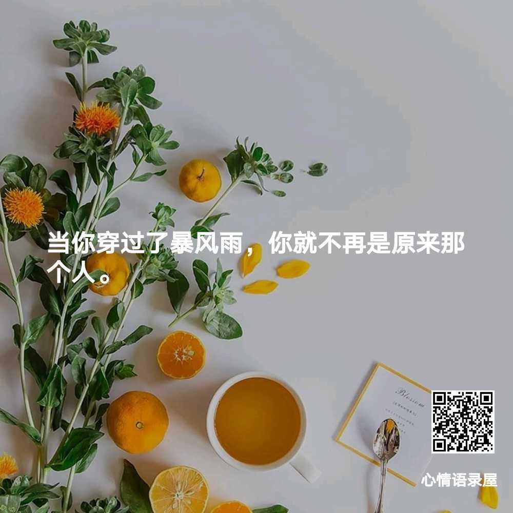 http://www.58100.com/index/detail/758064