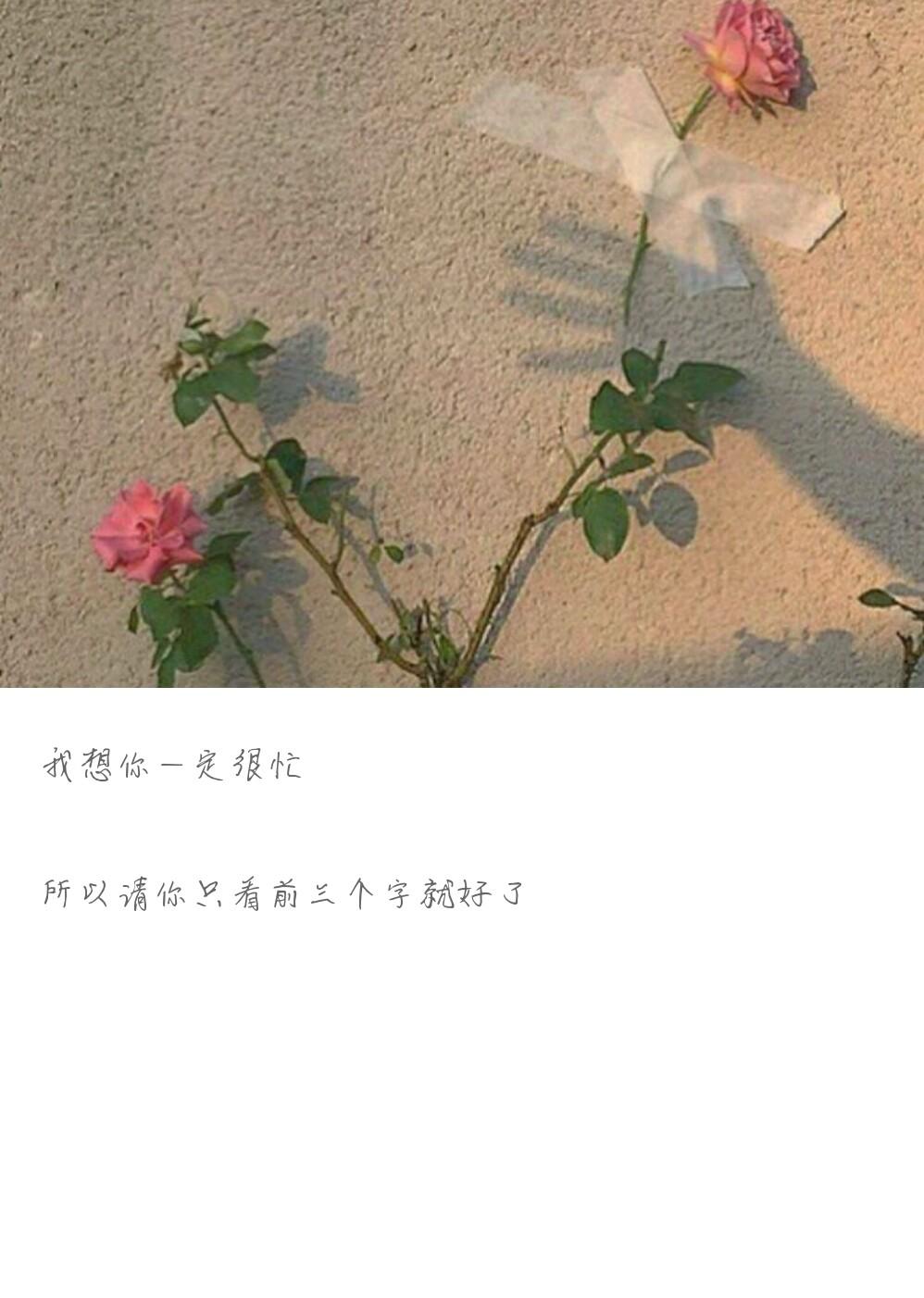 http://www.58100.com/pid/596537.html