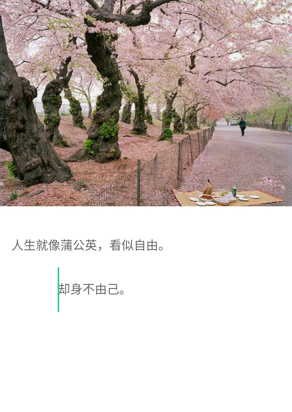 http://www.58100.com/pid/610284.html