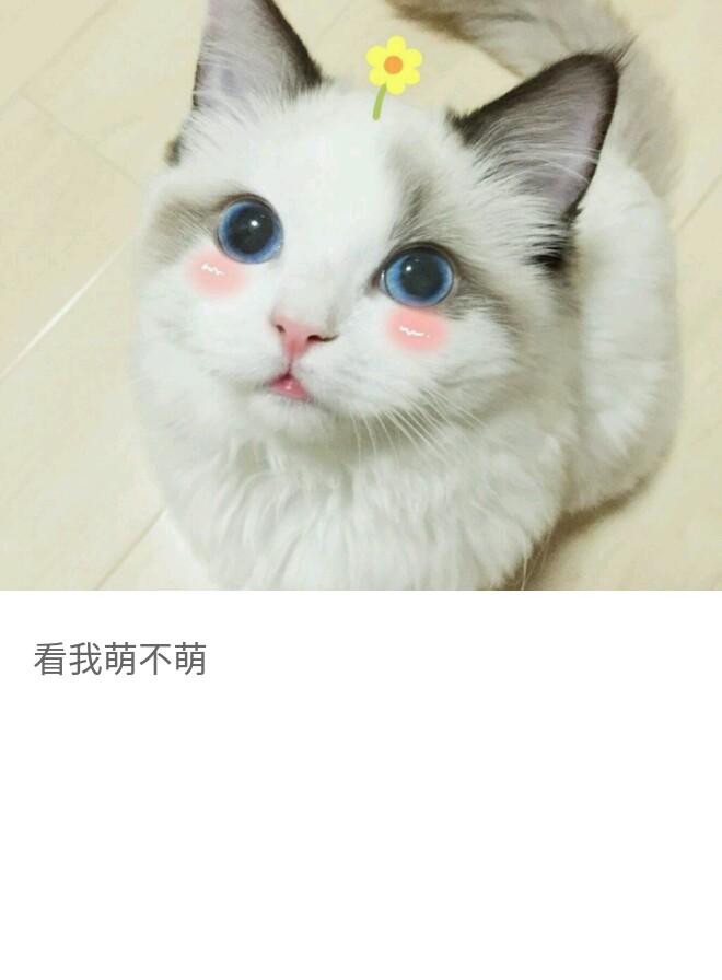 http://www.58100.com/pid/627915.html