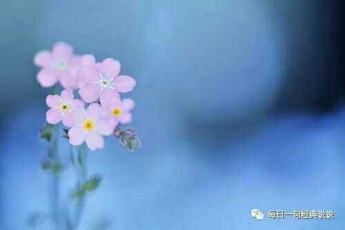 http://sucai.58100.com/data/upload/images/201803/152095679899463.jpg