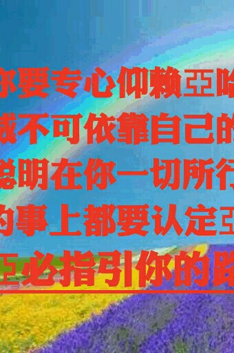 /pid/641376.html