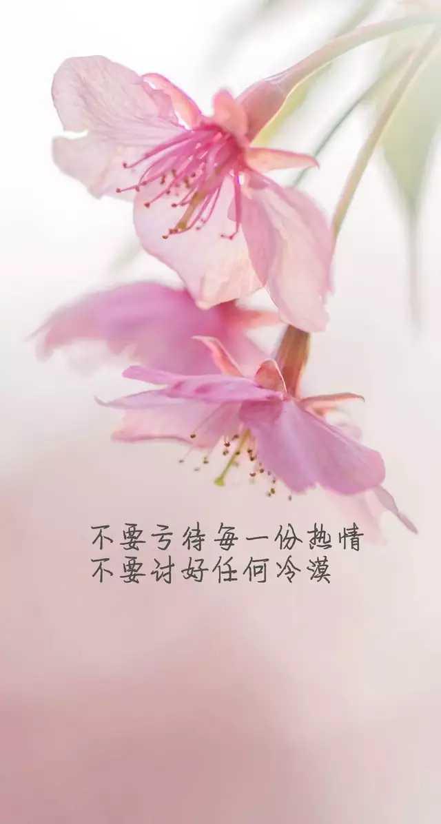 http://sucai.58100.com/data/upload/images/201912/157529887090018.jpg