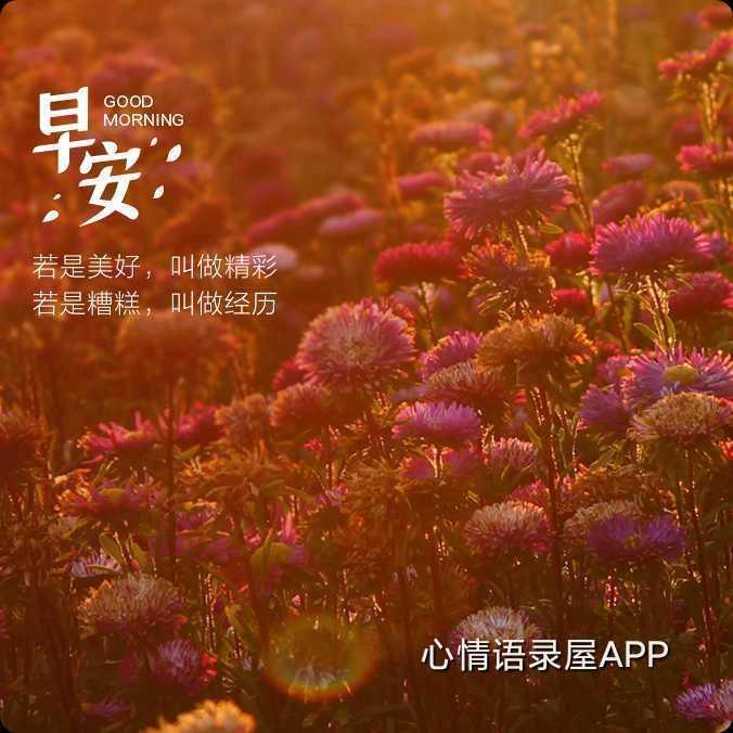 http://sucai.58100.com/data/upload/images/202109/163044452266824.jpg